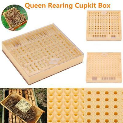 Bee Queen Rearing Cell Cupkit Box Case For Cupularve System Beekeeping Equipment