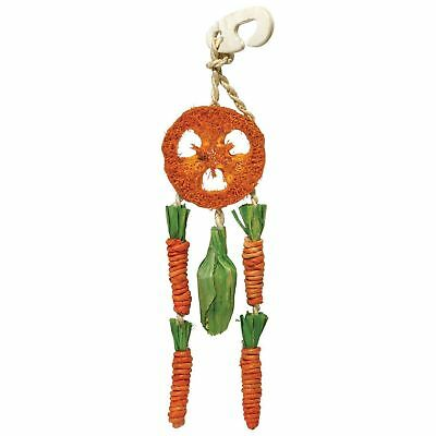 Rosewood Boredom Breaker Carrot Dream Catcher For Small Animals Treat Toy