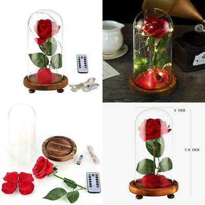 Valentine'S Day Gift Enchanted Lamp Flower Rose Flower Beauty Red Glass Dome For