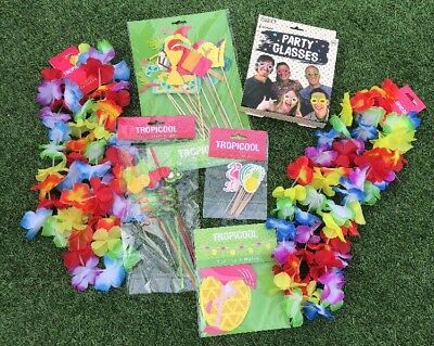 Summer Garden Party BBQ Kit Set, Photo Props, Straws, Bunting, Hawaiian Garlands