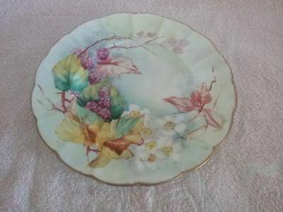 lovely hand painted plate