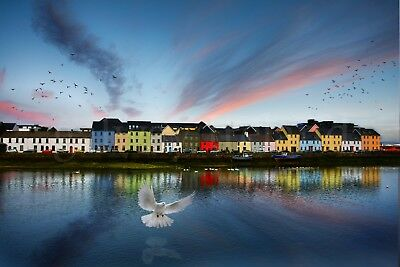 Colored fishermen's houses, Galway, A4 photo print high quality
