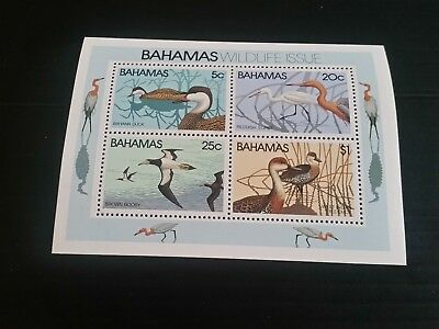 Bahamas 1981 Sg Ms593 Wildlife (1St Series) Mnh (A)
