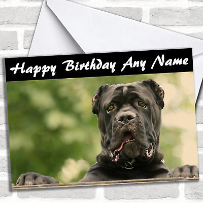 Cane Corso Dog Personalised Birthday Card