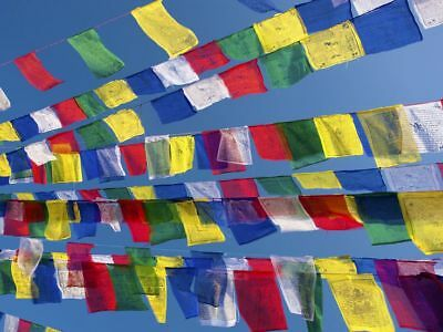 5 String Packs - Tibetan Buddhist Prayer Flags Wind Horses  - Made In Nepal ॐ