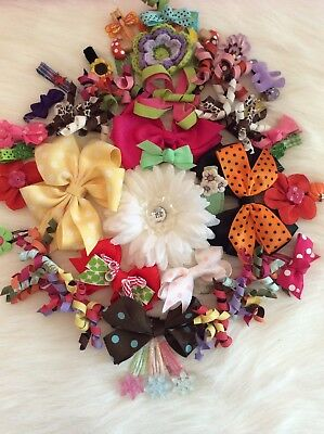Lot Of Gymboree And Miscellaneous Barrettes And Bows-48 Piece Set