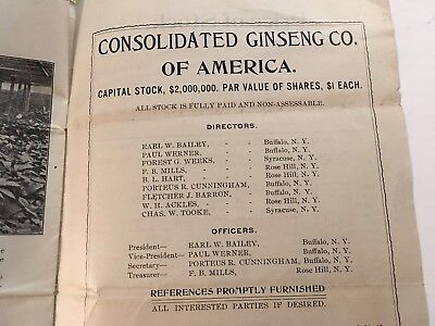 Rose Hill New York Ginseng Farm Booklet Promoting Stock Ownership 1904