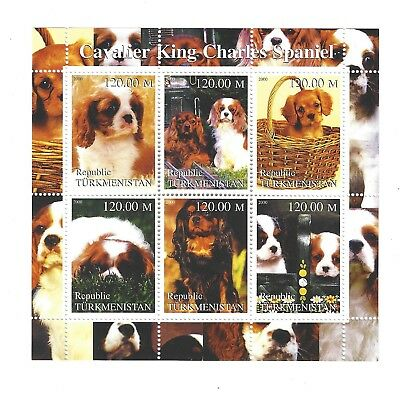 mini stamp sheet  - dog - CAVALIER KING CHARLES SPANIEL - Cinderella