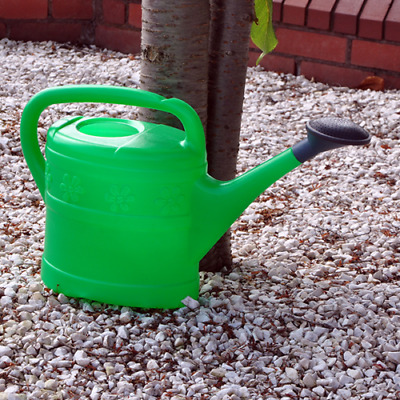 10L Green Plastic Watering Can w/ Black Rose Head For Veg Patches & Large Plants