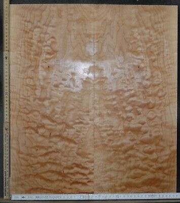 Tonewood Quilted Ahorn Maple Guitar Luthier Tonholz Acoustic Backs Top Set 1