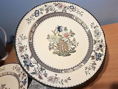 """Copeland Spode """"Chinese Rose"""" Hand Finished 26.5cm Dinner Plate. Excellent Cond."""