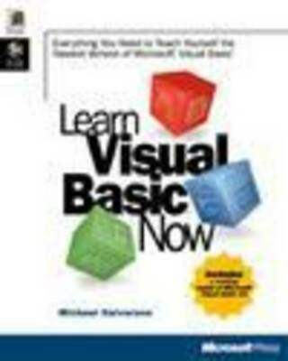 Learn Visual Basic now: everything you need to teach yourself the newest