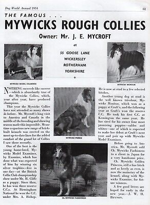 Rough Collie Dog World Breed Kennel Advert Print Page Mywicks Kennel 1954