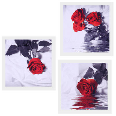 3 Panel Modern Art Painting Oil Print Painting on Canvas Rose in Water