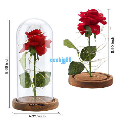 Beauty and the Beast Rose Lamp Glass Dome LED Lighted Wedding Decor Gift Wooden