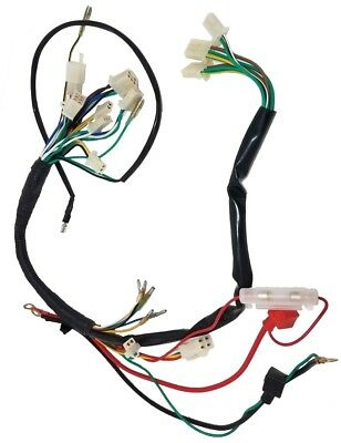WIRING HARNESS 50-110CC 2 Headlight Chinese Atv Jm Star Jmstar ... on cable harness, oxygen sensor extension harness, electrical harness, maxi-seal harness, nakamichi harness, fall protection harness, amp bypass harness, radio harness, dog harness, safety harness, suspension harness, pet harness, battery harness, engine harness, alpine stereo harness, pony harness, obd0 to obd1 conversion harness,