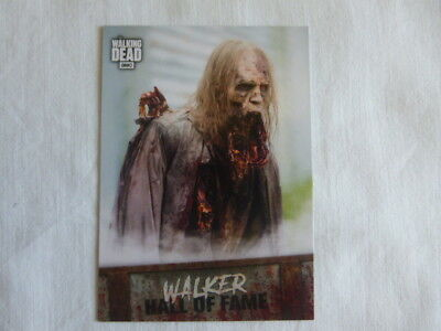 The Walking Dead Road to Alexandria Walker Hall of Fame W-9