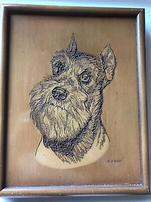 "Signed by E.H. Hart wood etching, Schnauzer 10""x 12"""