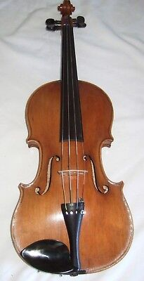 Antique Panormo 4/4 fine violin One piece back in good playing order & condition