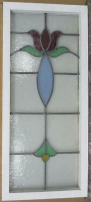 "LARGE OLD ENGLISH LEADED STAINED GLASS WINDOW Spectacular Floral 15.5"" x 35.5"""