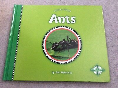 HARDBACK BOOK - Nature Friends ANT - Excellent Condition Insects Creepy Crawlies
