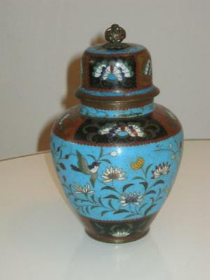 Stunning Antique Chinese Cloisonne Lidded Jar