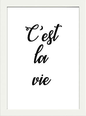 INSPIRATIONAL MOTIVATIONAL c'est la vie french quote POSTER PRINT HOME WALL ART