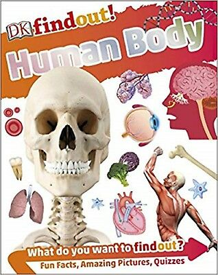 Human Body (DKfindout!) Paperback Book