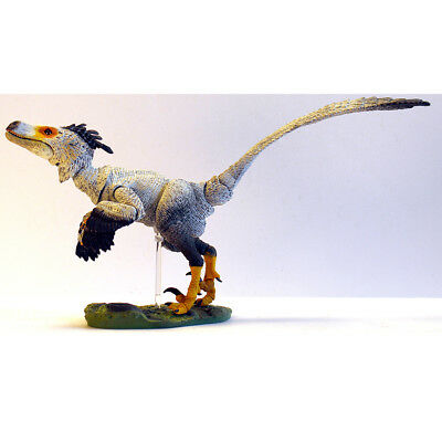 Beasts of the Mesozoic Saurornitholestes sullivani