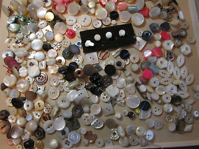Lot Of 300 +  Antique & Vintage Diminutive To Small Pearl/ Shell Buttons