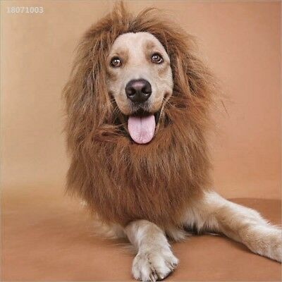 New Pet Dog Cat Cute Lion Mane Wig Halloween Party Clothes Costume Dress up AD9B
