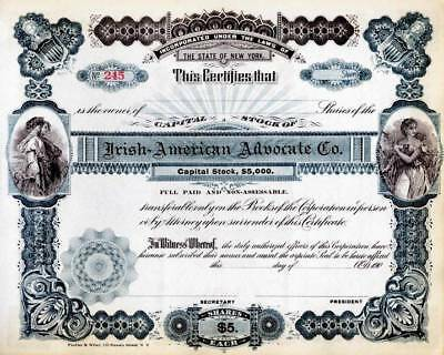 Irish - American Advocate Company Stock Certificate - New York, 1901
