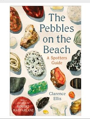 The Pebbles on the Beach: A Spotter's Guide PRE ORDER NOW For 2 August 2018