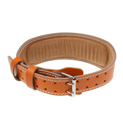 """Brown Gym Weight Lifting Belt 4"""" Leather Lumbar Back Support Power Training"""
