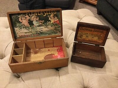 Antique D M Ferry & Co Flower Seed Packet Store Display Box Litho Vintage lot x2