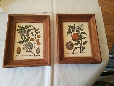 Kay Dee Hand Prints Almond and Pomegranate framed art (Vintage)