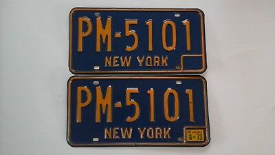 New York State License Plates 1973 (EXCELLENT)