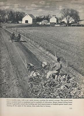 Farming Iowa 1940s VINTAGE PHOTO From Book  Farm Horse Teams Rare