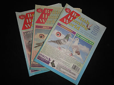3x British Homing World racing pigeon birds magazines back issue April 2015