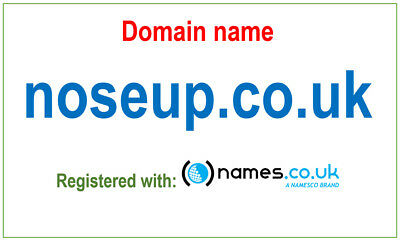 Domain name - noseup.co.uk - Registered with Namesco. Nose Up