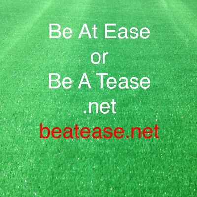 Domain Name - beatease.net - hosted with GoDaddy