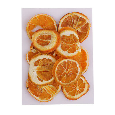 Pressed Dried Fruits Orange Slices for Home Decor Resin Jewelry Crafts 10pcs