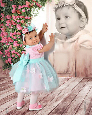 Canis Kid Baby Girl Dress Lace Tulle Gown Bridesmaid Dresses Sundress Clothes
