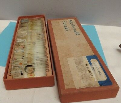 Microscope [ Microscope Slides ]  Boxed [ Qty = 50 ] largely Professional