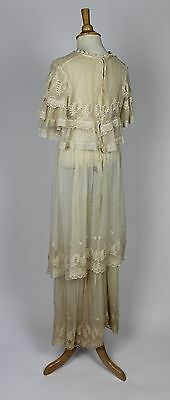 Antique Dress 19th Century Lace Gown with Plant Pattern Trim and a Lace Collar