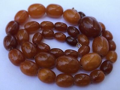 "Vintage Baltic Butterscotch Egg Yolk Amber Graduated Necklace 22 grams -18"" Long"