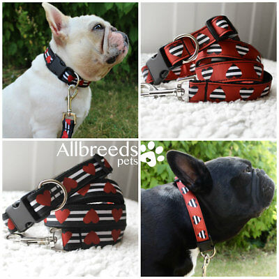 Allbreeds Heart Stripe Dog Collar and Lead Set Frenchie Puppy French Bulldog Pug