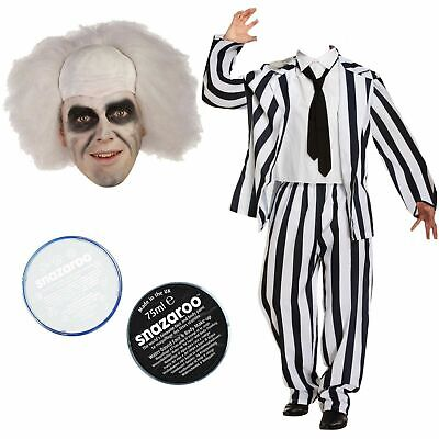 Beetlejuice Suit Wig Snazaroo face paint Halloween Party Fancy dress costume