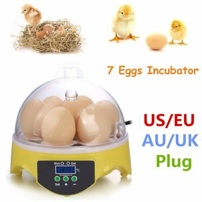7 Digital Clear Egg Incubator Hatcher Automatic Turning Temperature Control Owu