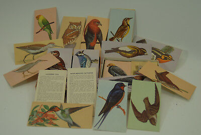 Vintage Teach Me About Birds Flash Card Set 1962 by McGraw Hill Book Company